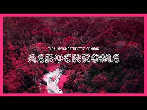 The Surprising True Story of Kodak Aerochrome / Part One