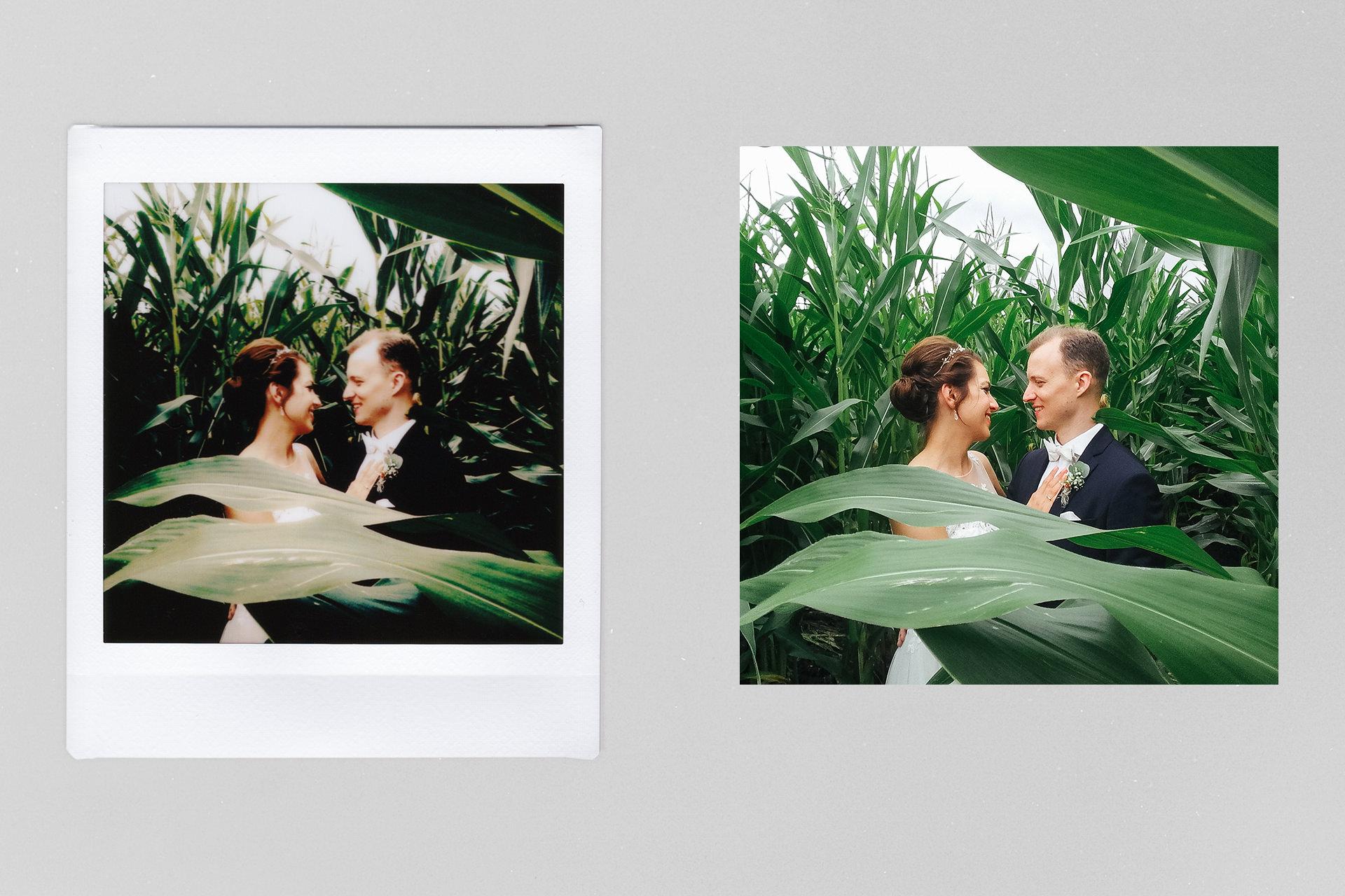 Testbericht Fuji Instax SQ10 – Vergleich zwischen Druck und digitalem Bild