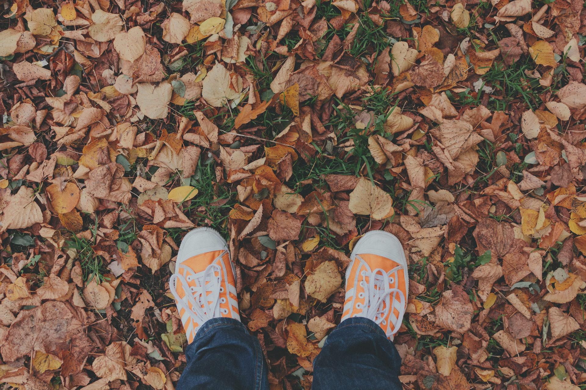 Füße im Herbstlaub – VSCO Verblassen in Lightroom nachbauen