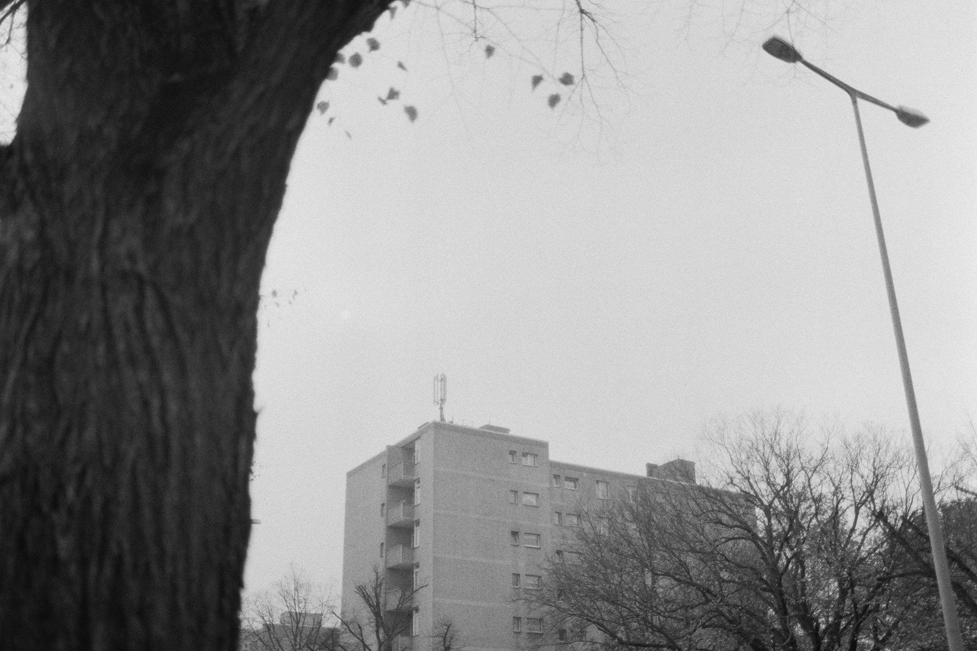 Plattenbau in Berlin - Testbericht Lomo Earl Grey 100 Schwarzweiß-Film