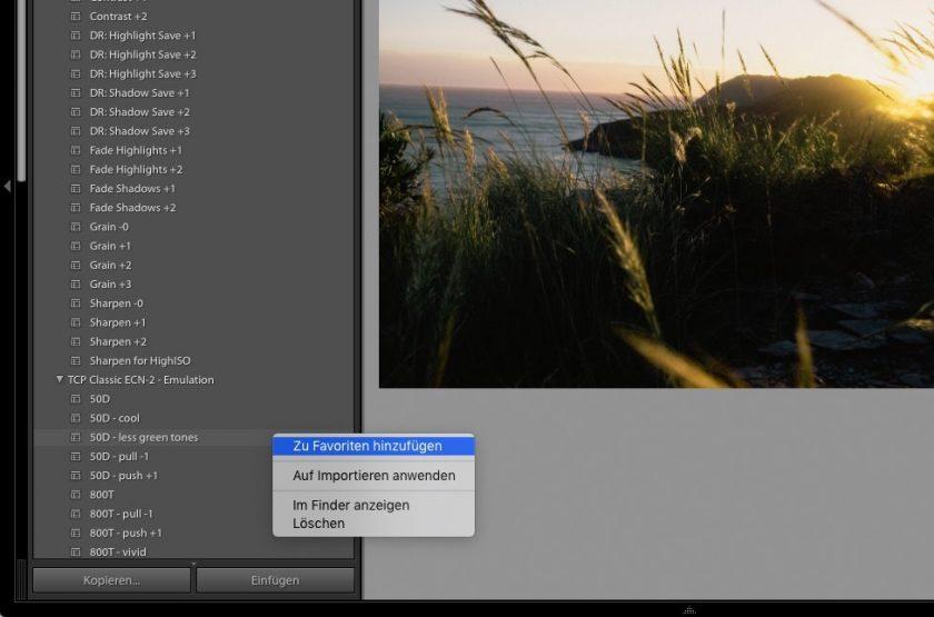 Screenshot des Preset-Fensters in Adobe Lightroom Classic
