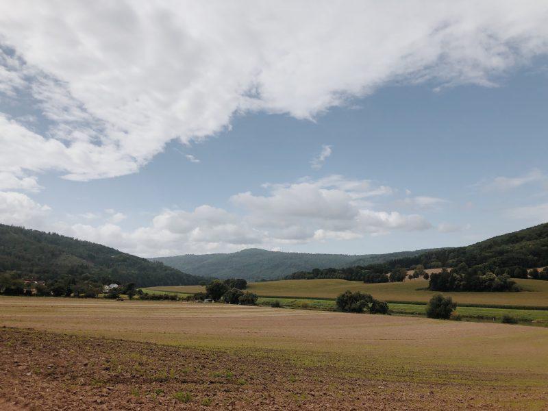 Abwechslungsreiche Landschaft am Weserradweg